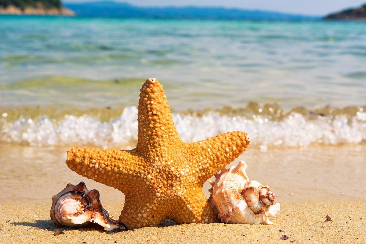 plaża lato i wakacje - oferta dstępna w biurze podróży OdraTravel w Szczecinie